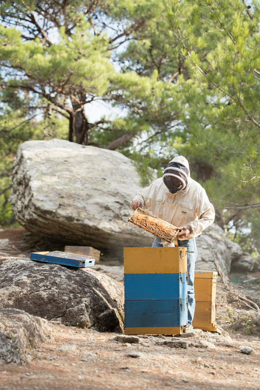 beekeeping in Ikaria